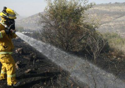 Firefighter Israel November Fires